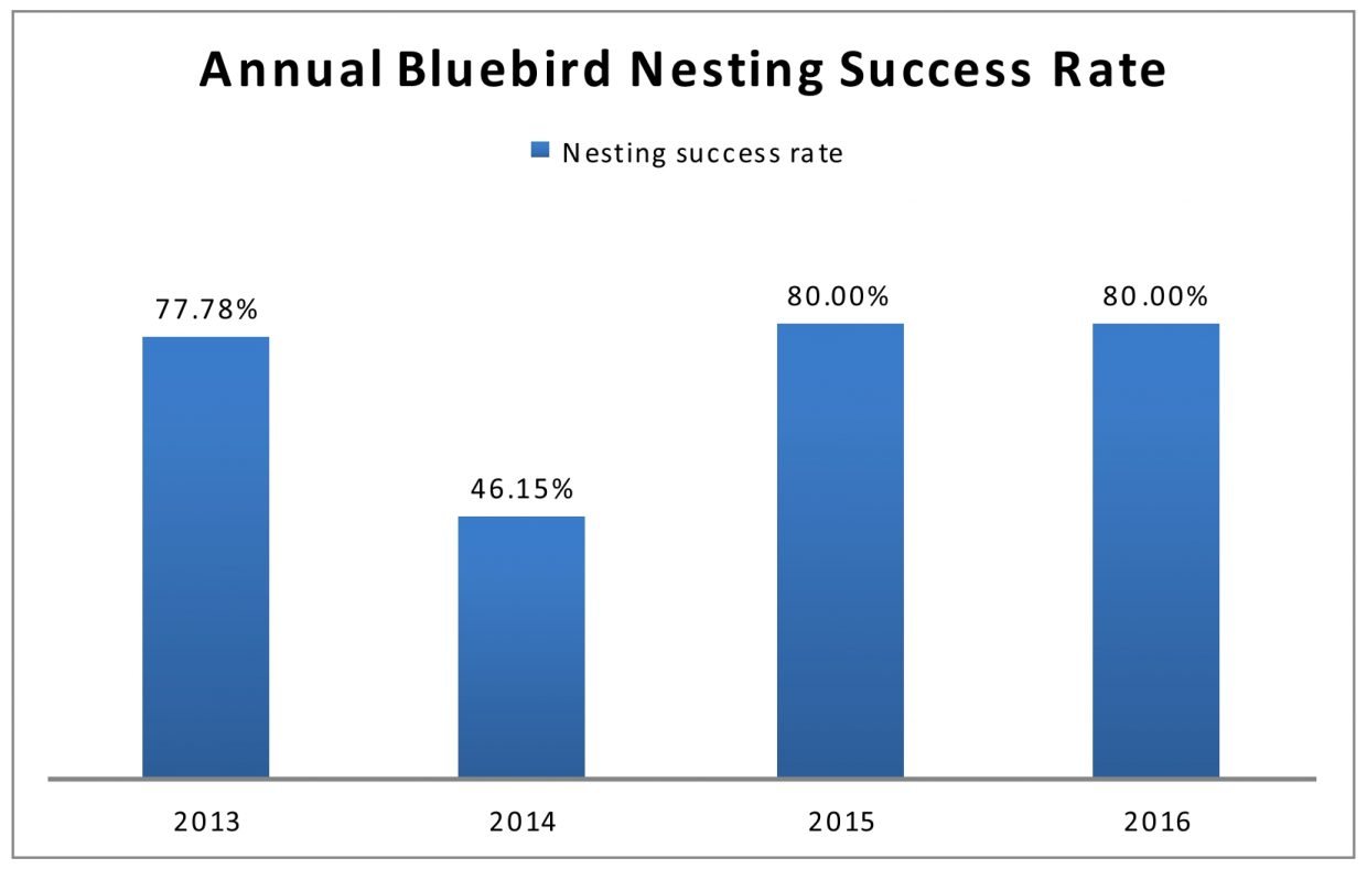 annual-bb-nesting-success-rate-2013-2016